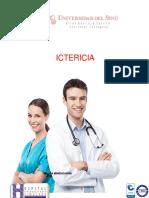 ICTERICIA FORMATO NUEVO.pdf