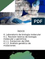 Tema 4- Exposición laboratorio de bilogia molecular