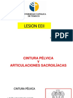 LESION EEII FINAL -pdf.pdf