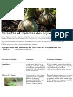 Parasites et maladies des oignons