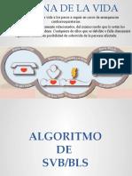Algoritmo de SVB BLS