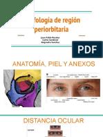 región periorbitaria. Elementos de morfología y semiología