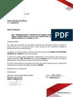 david (1)-firmado (1).pdf