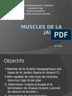 3-Muscles de la jambe.pptx