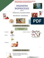 2b-Carbohidratos
