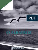O Albatroz - Jose Geraldo Vieira