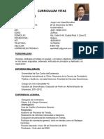 Curriculum Vitae Jorge López-