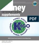 KDIGO-Acute Kidney Injury Guide.pdf