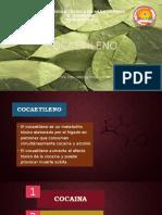 Coca Etileno