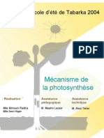 phtosynthese_fr