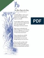 The Blue Flag in the Bog - Edna St. Vincent Millay