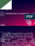 MEMBRANA PLASMÁTICA.odp