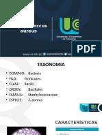 Staphylococcus aureus.pptx