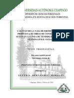 calculo de tasa de erosión.pdf