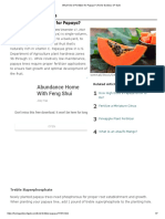 What Kind of Fertilizer for Papaya_ _ Home Guides _ SF Gate