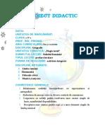 8_proiect_geografie.doc