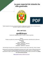 Gobierno del Perú.pdf