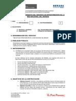 TDR Servicio de Interconexión de red nacional de senasa OFICIAL.pdf