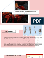 inhibidores de sintesis de quitina.pptx