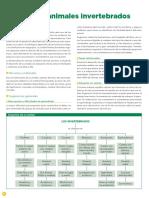 Los animales invertebrados.pdf