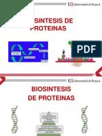 5.2 BIOSINTESIS DE PROTEINAS