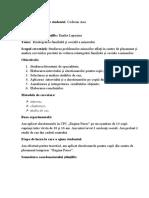 Schema de prezentare a raportului pentru susținerea prealabilă a tezei de licență