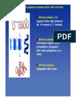 Struttura proteine2015 seconda parte.pdf