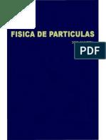 fisica_particulas