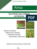 G Arroz.pdf