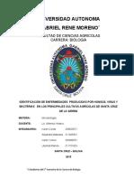 Patologia_expocicion.docx