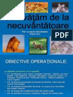 prezentare_lectie_sanvatam_de_la_necuvantatoare_cerc_pedagogic_prof._lucasciuc_alina