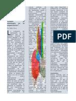 tarea 1 articulo especializado-Pablo Oliva-IDE13149053 Evaluacion del Desempeño.docx