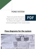 POND SYSTEM.pptx