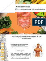 03._Absorciyyn_de_nutrientes.pdf