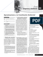 Constitucion Ambiental (Pierre Foy).pdf
