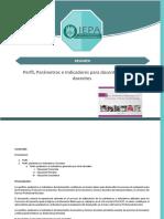 Resumen Perfil, Parámetros e Indicadores para docentes y técnicos docentes