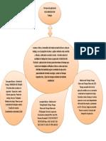 Mapa conceptual. Proceso de aplicación de la Medición del Trabajo