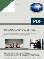 psicobiologia del estres_UNAD (1)