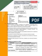 Silabo Curríc I Comp. Inf-1.doc