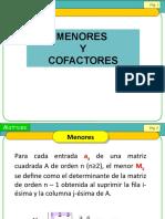 menores y cofactores diapositivas 20 de Abril clase algebra