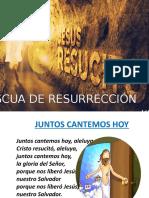 misa Pascua de Resurrección