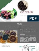 Uva y Frijol.pdf
