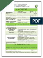 PLAN MUSCULOS ARTICULACIONES Y HUESOSS ULTIMO (Autoguardado)