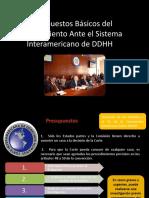 Aspectos Básicos  Procedimiento Sistema Interamericano.pptx