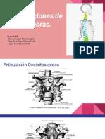 Articulaciones (1).pptx