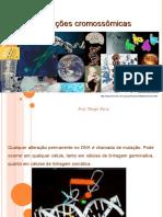 mutaescromossmicas-100527234724-phpapp02 (1)