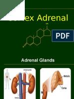 Adrenal cortex hormone