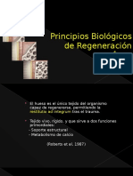 Regeneracion tisular guiada-Imjertos.pptx