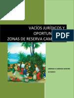 Cardoza_German_Vacion_juridicos_y_oportunidades_zrc