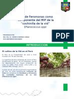 Feromonas Presentación general.pptx